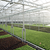 Gotham Greens brings greenhouse to former Sparrows Point steel mill site